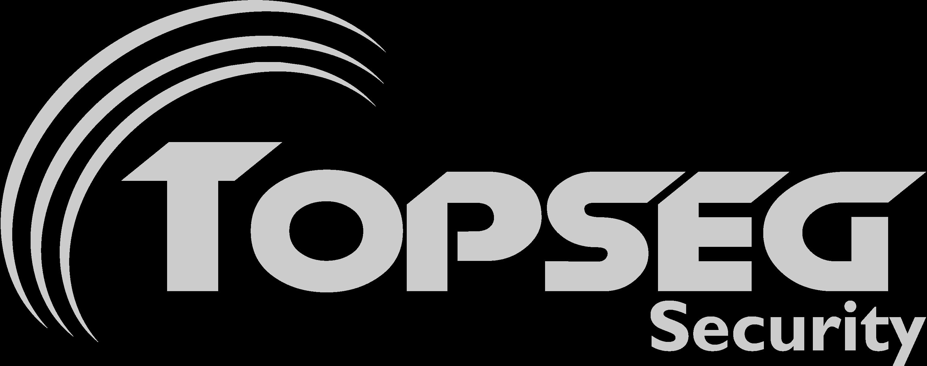 Logo TOPSEG