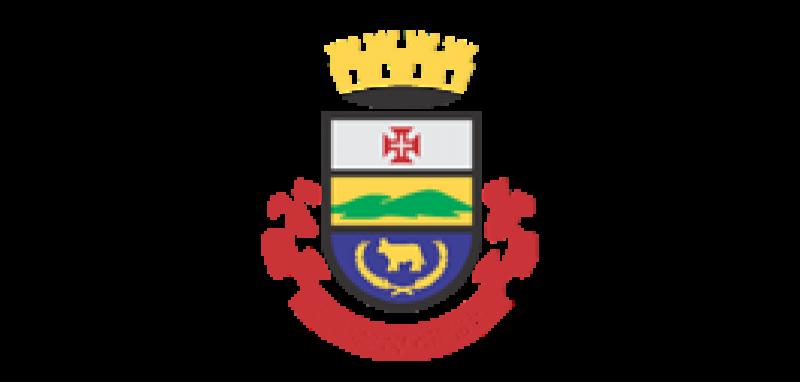 Brasão  São Gabriel