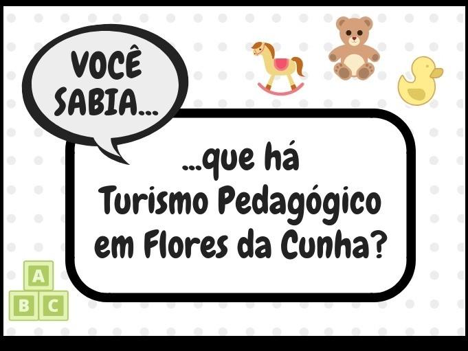 Foto Você sabia que há turismo pedagógico em Flores da Cunha?