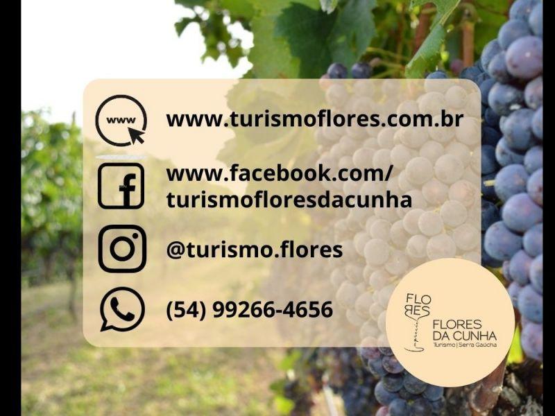 Foto Mídias Sociais Turismo Flores