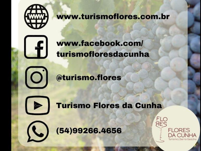 Foto Secretaria de Turismo disponibiliza novo canal de comunicação