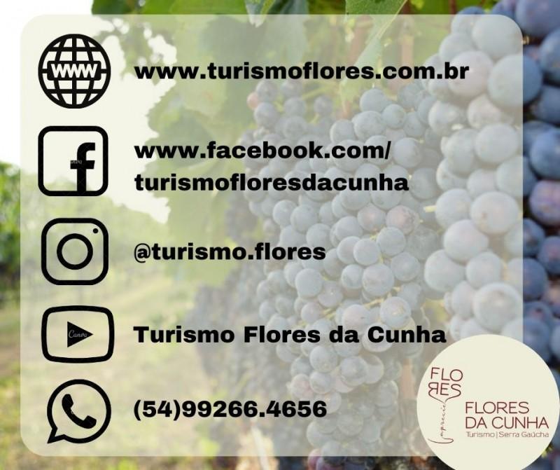 Foto de capa Secretaria de Turismo disponibiliza novo canal de comunicação
