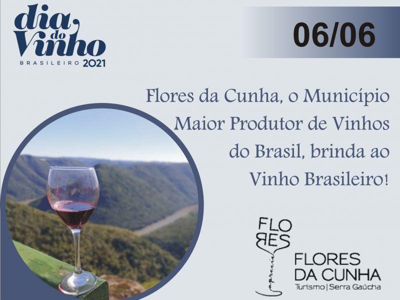 Foto Flores da Cunha, o Município Maior Produtor de Vinhos do Brasil, brinda ao vinho brasileiro!