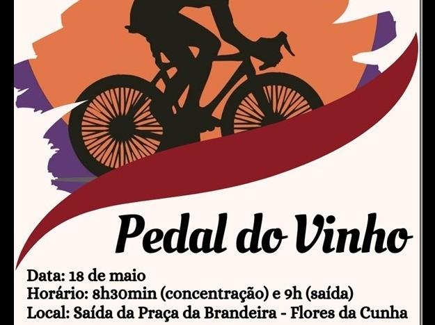 Foto Pedal do Dia do Vinho ocorre neste sábado, dia 18, em Flores da Cunha