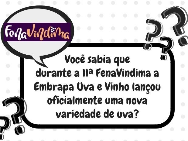 Foto Você sabia que durante a 11ª FenaVindima a Embrapa Uva e Vinho lançou oficialmente uma nova variedade de uva?