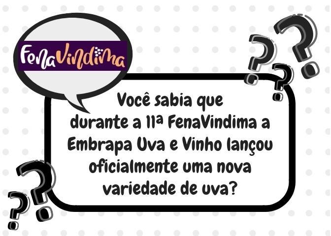 Foto de capa Você sabia que durante a 11ª FenaVindima a Embrapa Uva e Vinho lançou oficialmente uma nova variedade de uva?