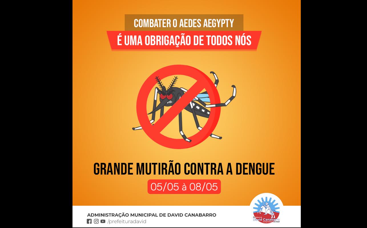 Foto de capa da notícia Todos Contra a Dengue