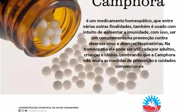 Foto de capa da notícia: Secretaria de Saúde irá distribuir Camphora para todos os munícipes.