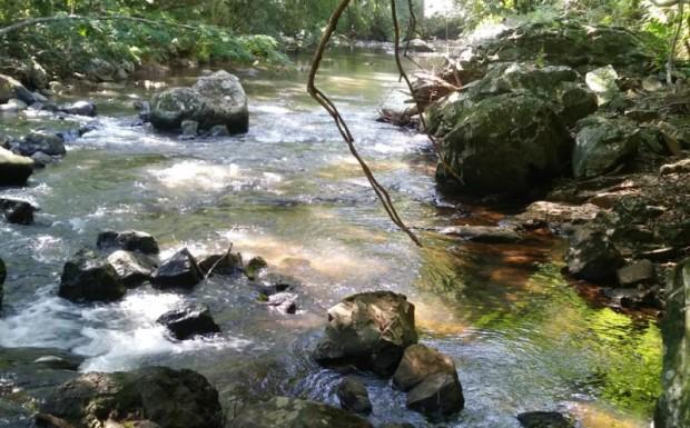 Foto de capa da notícia: Aplicação do BTI nos cursos hídricos do Município para controle dos borrachudos