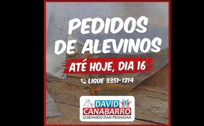 Foto de capa da notícia PRAZO PARA PEDIDOS DE ALEVINOS ENCERRA HOJE