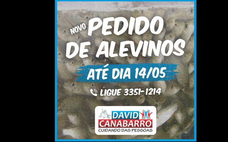 Foto de capa da notícia: ABERTO NOVO PRAZO PARA PEDIDOS DE ALEVINOS
