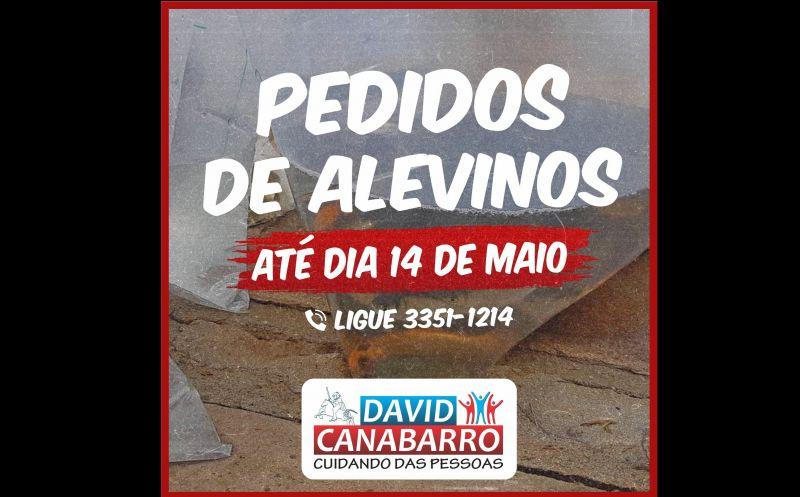 Foto de capa da notícia PEDIDOS DE ALEVINOS PODEM SER FEITOS ATÉ 14 DE MAIO