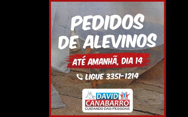 Foto de capa da notícia: PRAZO PARA PEDIDOS DE ALEVINOS ENCERRA AMANHÃ