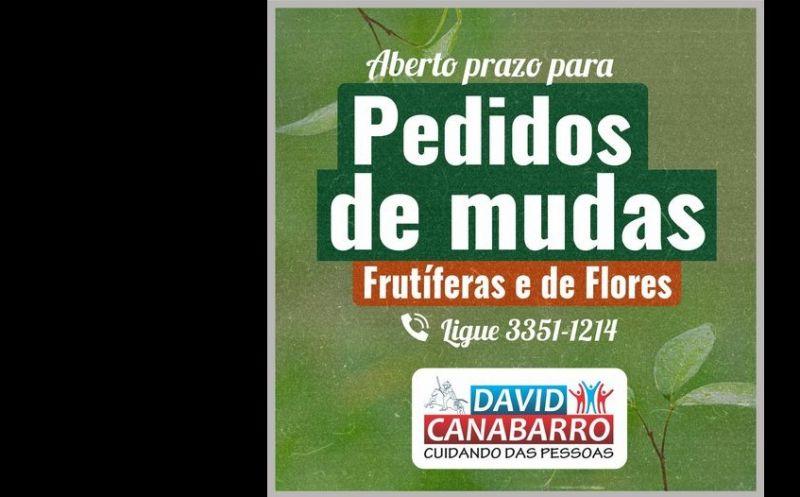 Foto de capa da notícia: Pedidos de Árvores Frutíferas