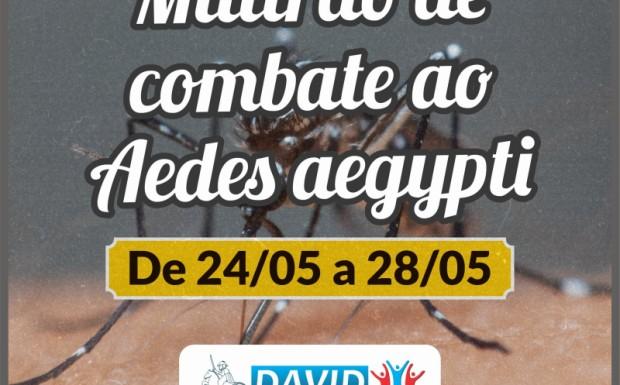 Foto de capa da notícia: AÇÃO DE COMBATE AO AEDES AEGYPTI ACONTECE NA PRÓXIMA SEMANA