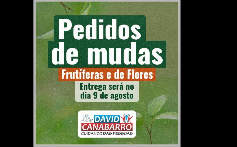 Foto de capa da notícia ENTREGA DAS MUDAS SERÁ NO DIA 9 DE AGOSTO