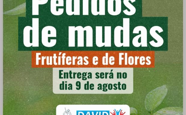 Foto de capa da notícia: ENTREGA DAS MUDAS SERÁ NO DIA 9 DE AGOSTO