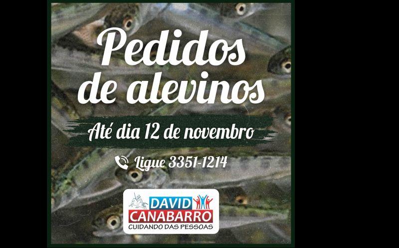 Foto de capa da notícia ABERTO PRAZO PARA PEDIDOS DE ALEVINOS
