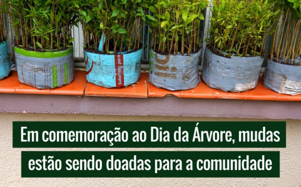 Foto de capa da notícia: EM COMEMORAÇÃO AO DIA DA ÁRVORE, MUDAS ESTÃO SENDO DOADAS PARA A COMUNIDADE