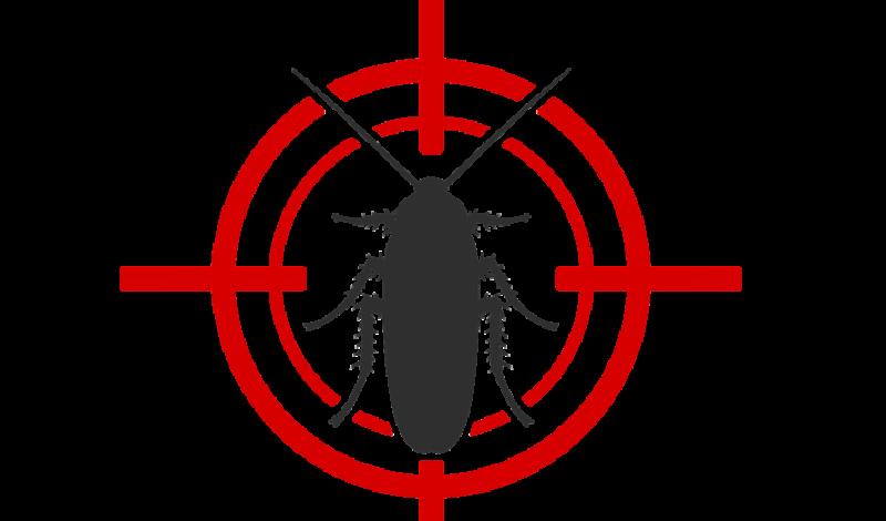 Foto de capa da notícia: Poder Público atua para eliminar insetos que causam incômodos em Guaporé