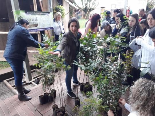 Foto de capa da notícia: Secretaria de Meio Ambiente distribui 500 mudas de árvores nativas durante a 30ª Semana Farroupilha