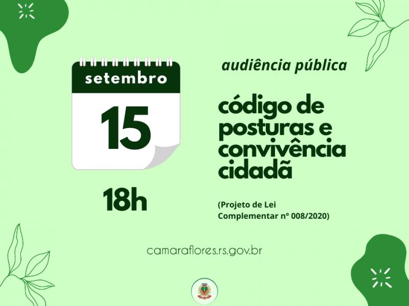 Foto de capa da notícia Audiência Pública debate Código de Posturas e de Convivência Cidadã