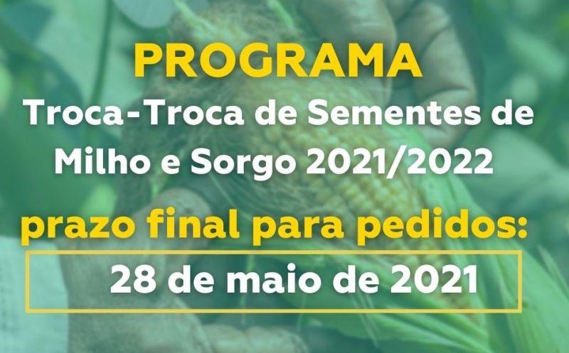Foto de capa da notícia PEDIDOS DE MILHO: TROCA TROCA DE SEMENTES SAFRA 2021/2022