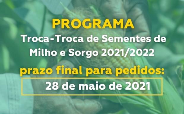 Foto de capa da notícia: PEDIDOS DE MILHO: TROCA TROCA DE SEMENTES SAFRA 2021/2022