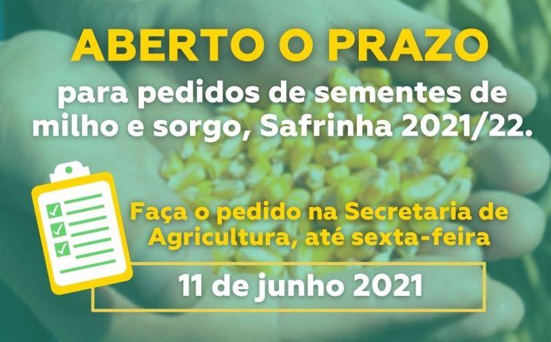 Foto de capa da notícia: Aberto o prazo para pedidos de sementes de milho e sorgo da Safrinha 2021/2022