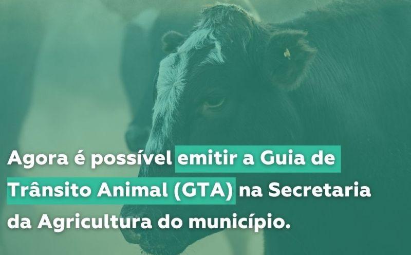 Foto de capa da notícia Emita sua Guia de Trânsito Animal na secretaria de Agricultura do Município