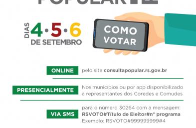 Votação da Consulta Popular 2019.