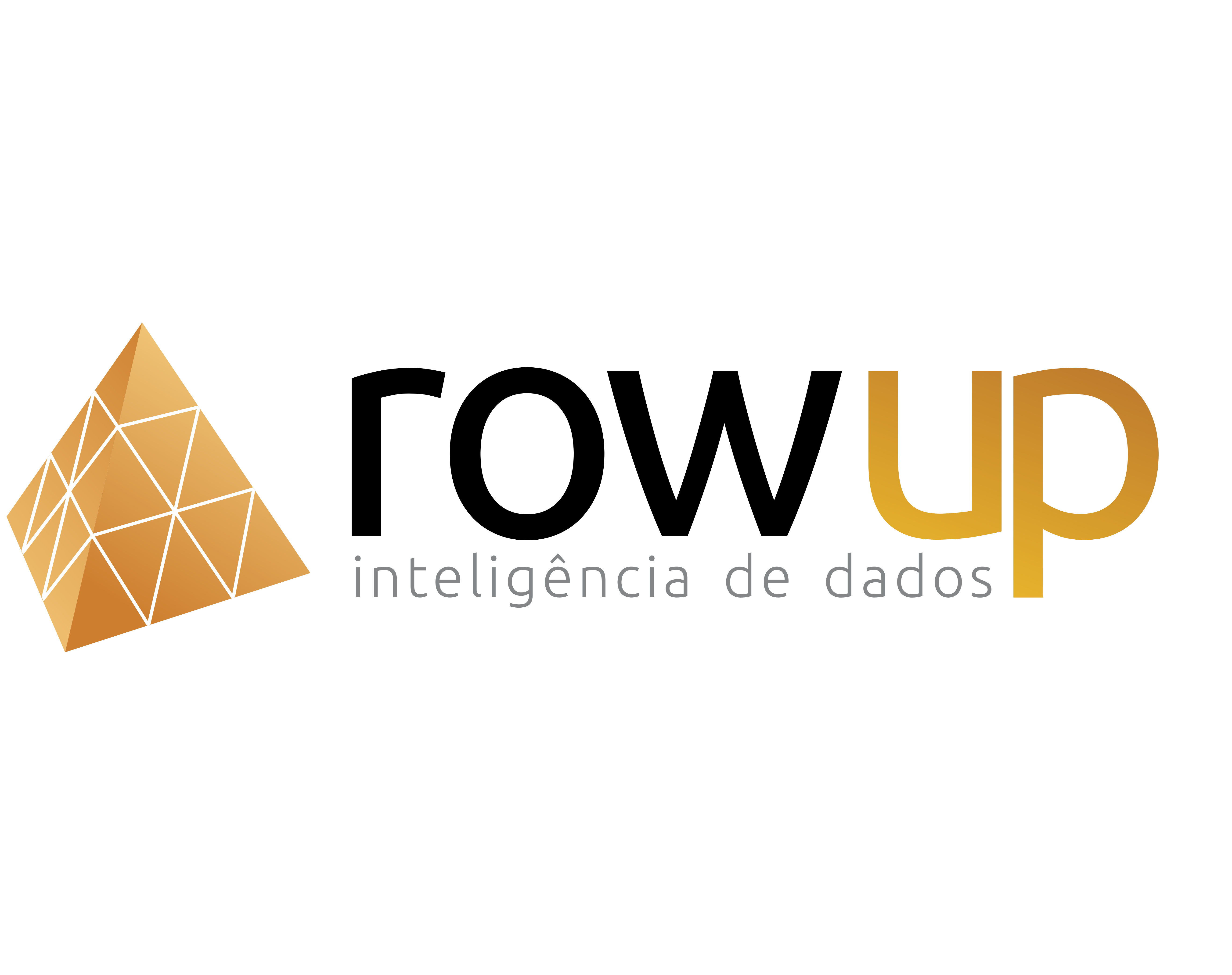 Row Up Inteligência de Dados