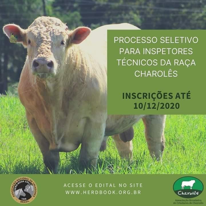 Foto de capa Charolês abre inscrição para processo seletivo de novos inspetores técnicos