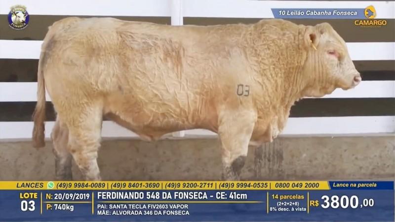 Foto de capa Leilão da Cabanha Fonseca registra crescimento de 30% na média de touros Charolês