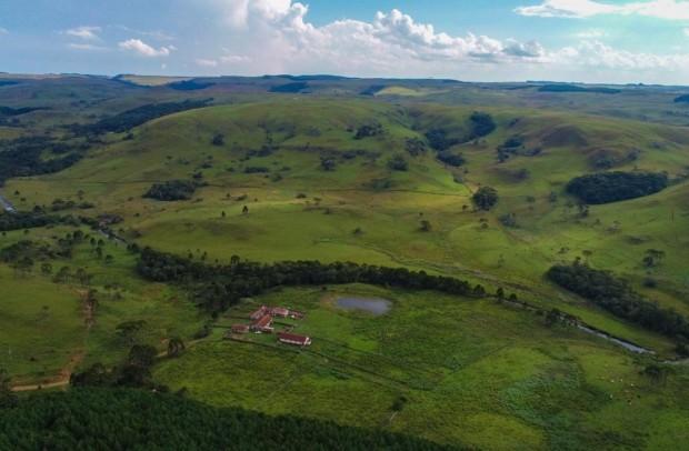 Vale do Cerquinha- Mangueira Nova
