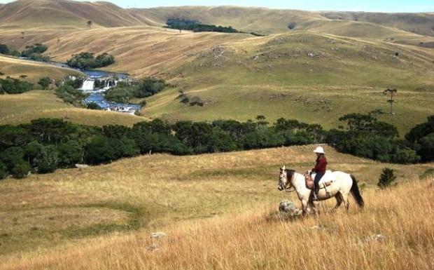 Foto de capa Passeio a Cavalo