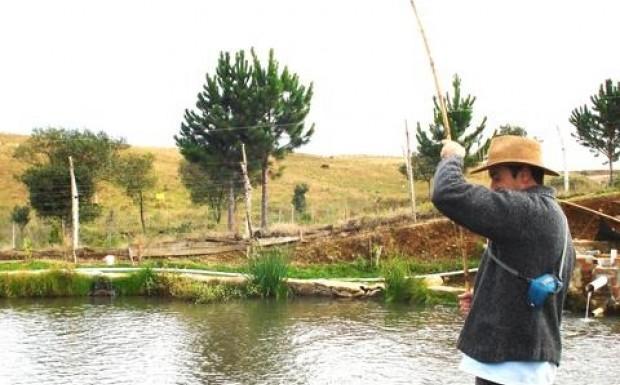 Foto de capa Pesca de Truta
