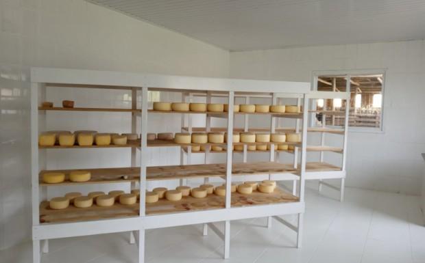 Foto de capa da notícia: Selo SIM será entregue aos primeiros produtores de queijo serrano nesta sexta-feira