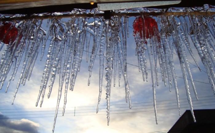Foto de capa da notícia Esculturas de gelo