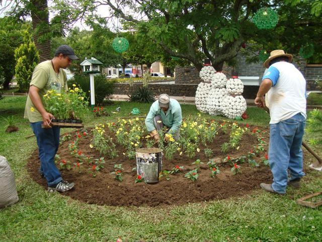 Foto de capa da notícia Prefeitura embeleza o município fazendo o plantio de flores de verão
