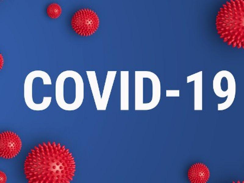 Foto de capa da notícia Câmara aprova indicação requerendo que seja implementado o protocolo de tratamento precoce para a COVID-19 em Nova Pádua.