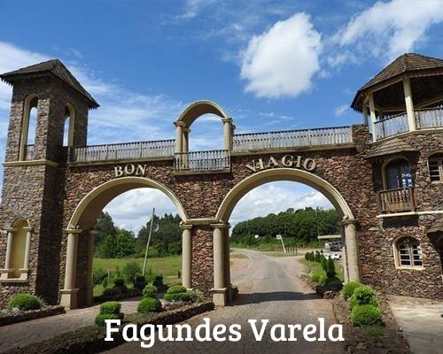 Banner 8. Fagundes Varela