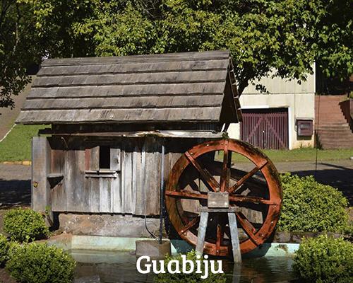 Banner 12. Guabiju