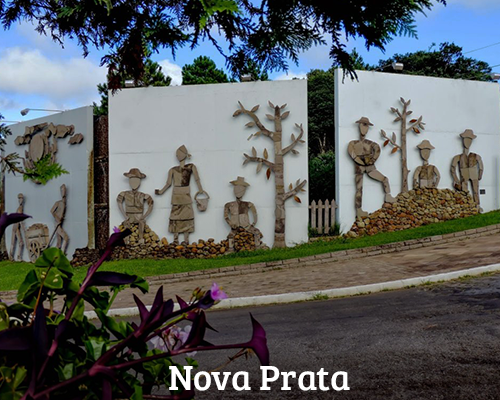 Banner 19. Nova Prata