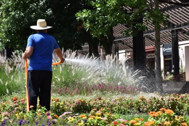 Foto de capa da notícia: Nova Petrópolis irriga canteiros de espaços públicos com água captada em lagos artificiais