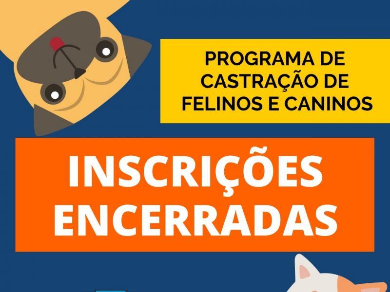 Foto de capa da notícia: Distribuição de fichas de castração de cães e gatos está encerrada em Nova Petrópolis