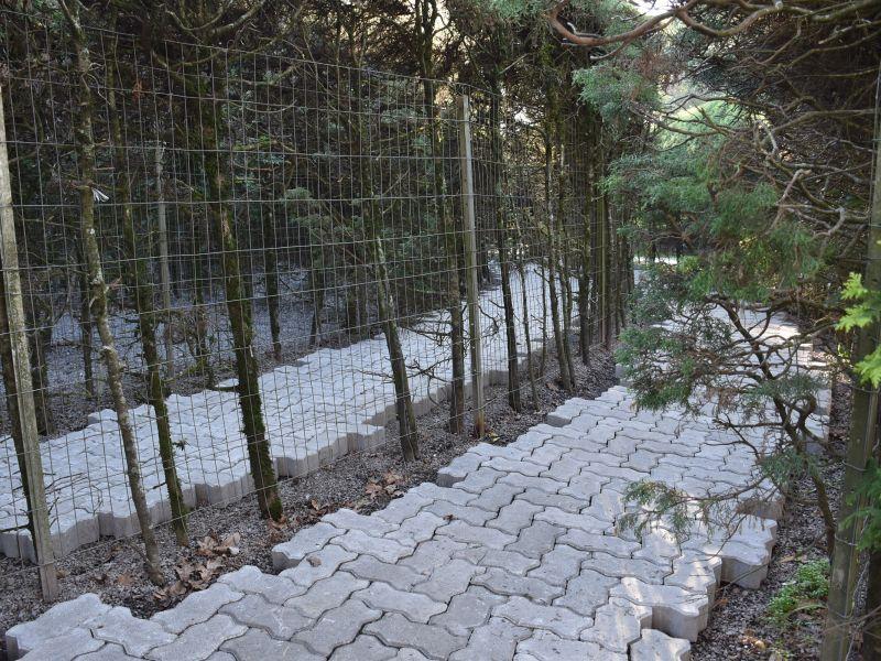 Foto de capa da notícia: Labirinto Verde de Nova Petrópolis recebe calçamento interno