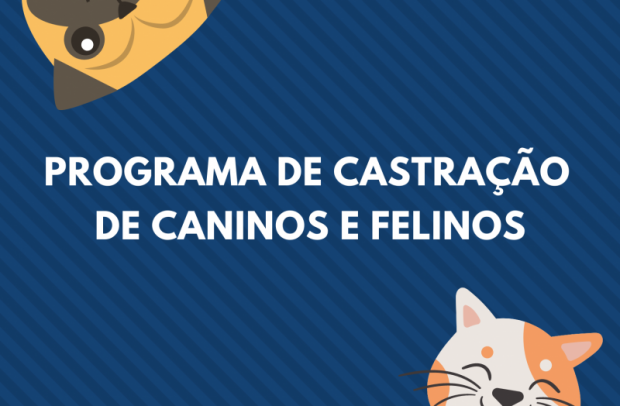 Foto de capa da notícia: Cirurgias de castração de cães e gatos estão em andamento em Nova Petrópolis