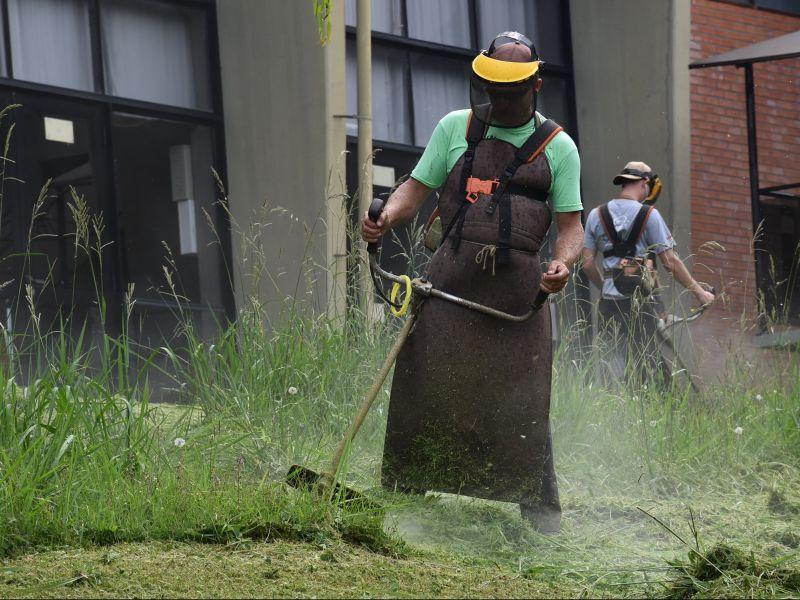 Foto de capa da notícia: Prefeitura de Nova Petrópolis abre frente de trabalho para as roçadas
