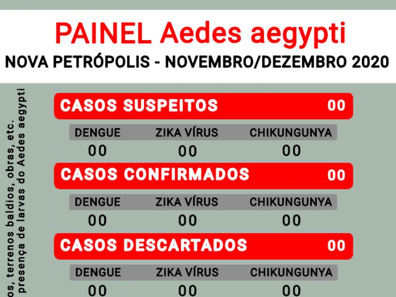 Foto de capa da notícia: Nova Petrópolis teve 10 focos do Aedes aegypti localizados entre novembro e dezembro